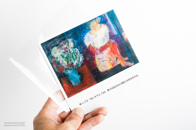 hayashi_book-15