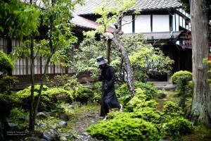 madoka_arikabe_teragishi-9391